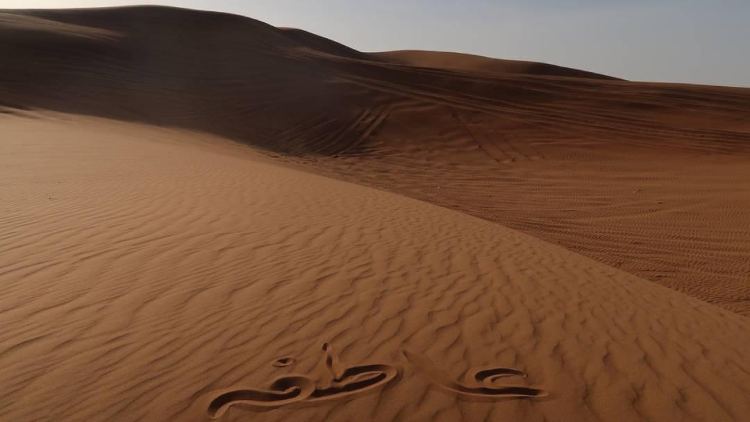 empty desert Egypt