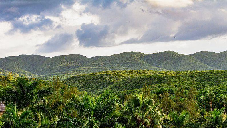 scenic landscape Jamaica