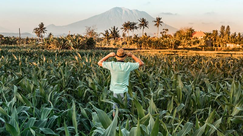 Indonesia in September