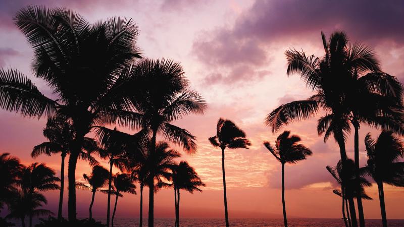 Maui Hawaii the Best LGBT Destinations